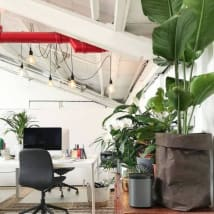 Desks for rent 75 Mary Street Saint Peters, NSW