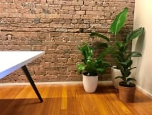 Desks for rent 3B Victoria Street Victoria Street Paddington, NSW