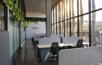 Private Office for 13 in Cremorne with 6 metre high windows