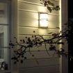 Basel utelampe på vegg med grener