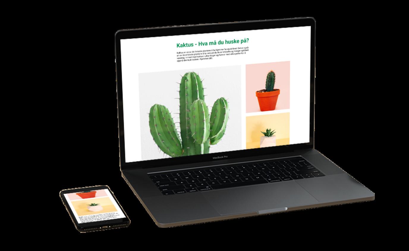 lynraske nettsider - viser mobil og desktop