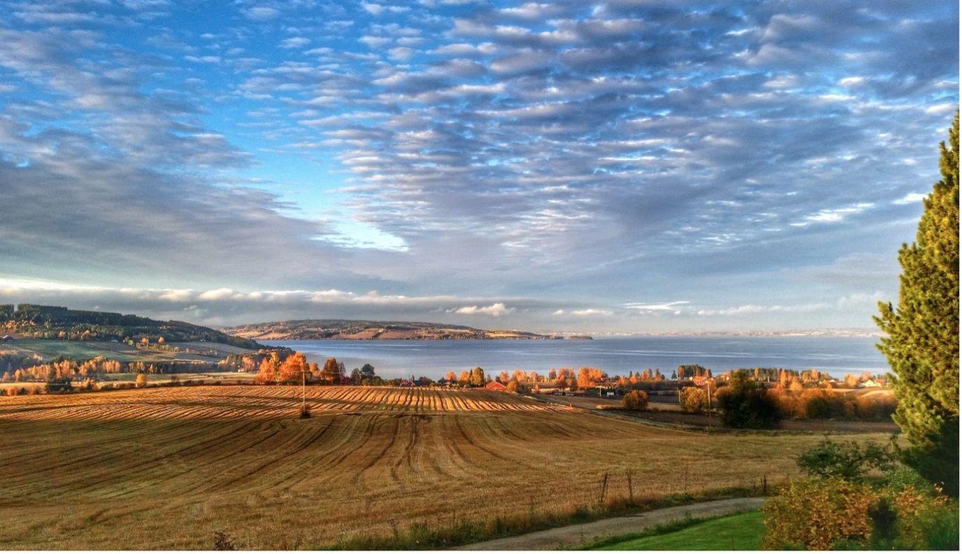 Bilde fra Toten med utsikt over jorder og Mjøsa