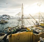 Fiske og fangst tønner med fisk havet fiskebåt