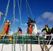 Fiskere arbeider på dekk