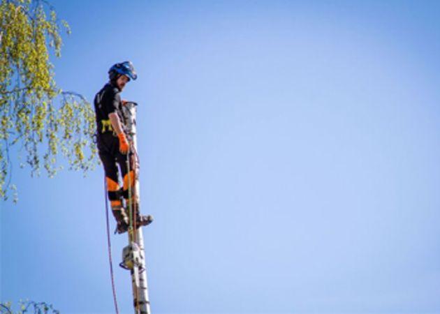Ung mann arbeider i toppen på en mast, på Stendis arbeids- og aktivitetstilbud i Skien.