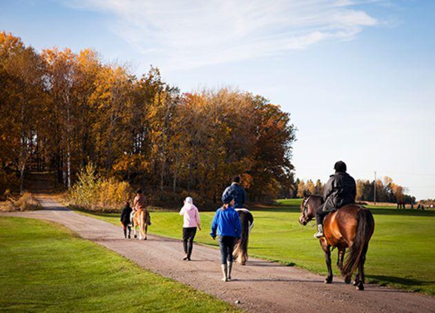 barn og ungdommer på ridetur i en park