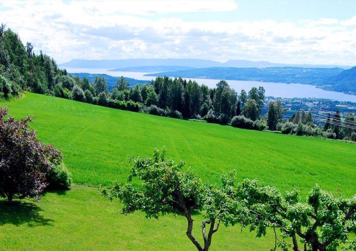 utsikt fra Lier gård
