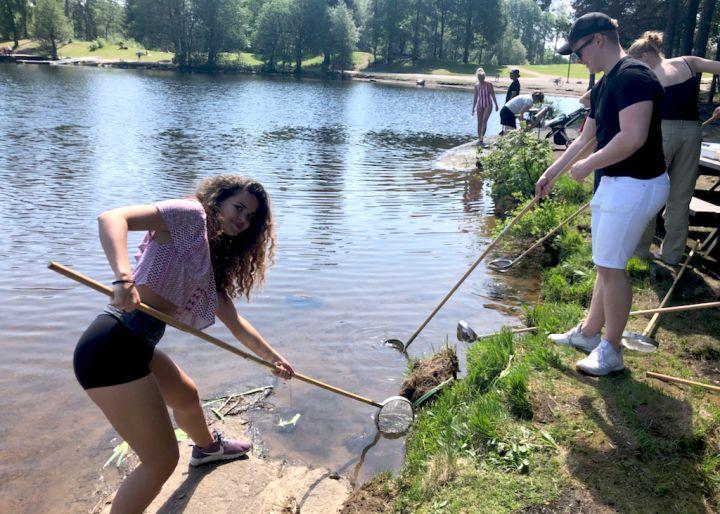 Elever som tar prøver fra vannet med håv