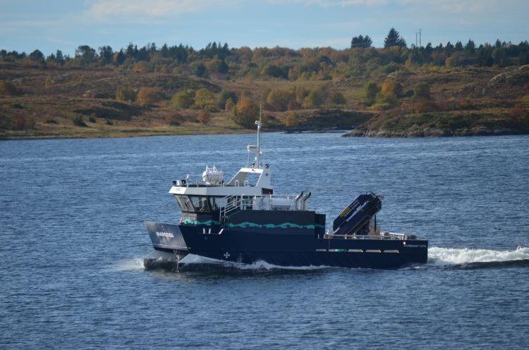 Servicebåt D6 sertifikat praktisk prøve