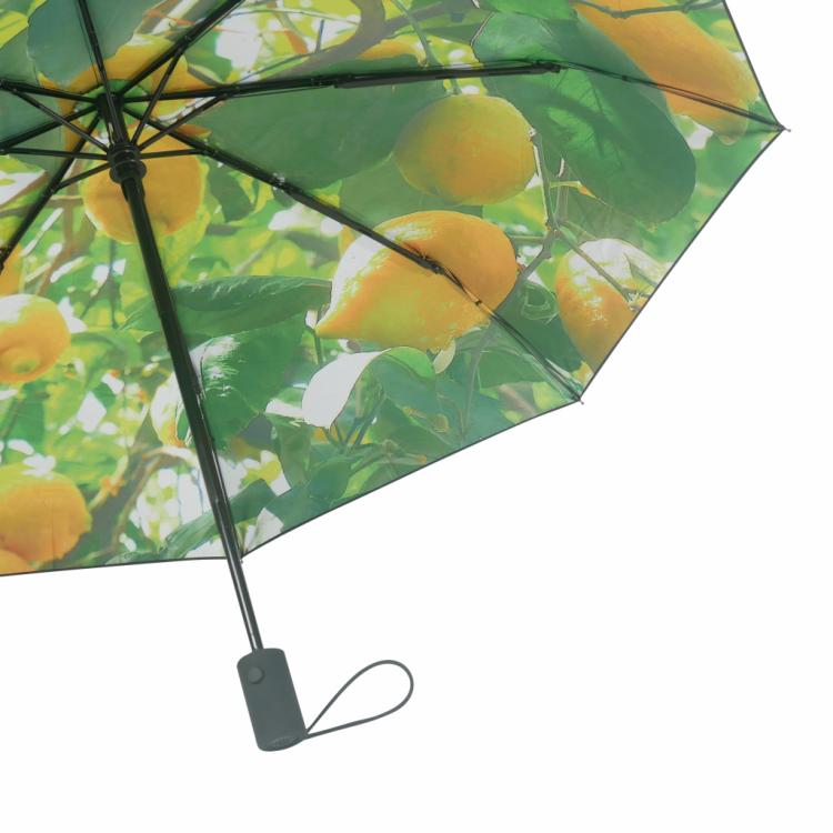 Paraply fra Happysweeds i designet lemon.