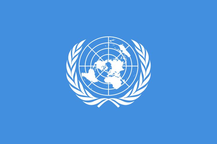 FN flagget - blått med hvitt emblem
