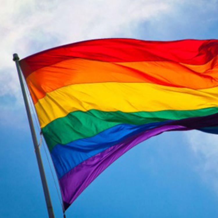 regnbueflagg på stang pride