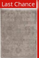 Rugstudio Sample Sale 186041R Taupe - Gray Area Rug