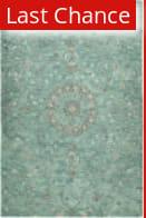 Rugstudio Sample Sale 180348R Turquoise Area Rug