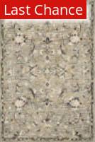 Rugstudio Sample Sale 199606R Grey - Multi Area Rug