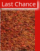 Rugstudio Sample Sale 37745R Rust Area Rug