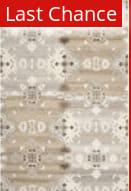 Rugstudio Sample Sale 94527R Grey / Multi Area Rug