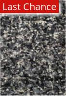 Rugstudio Sample Sale 182566R Grey - Multi Area Rug