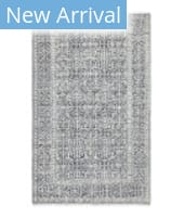 Solo Rugs Transitional S3328 Gray Area Rug