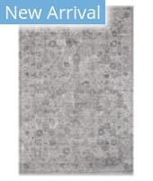 Solo Rugs Transitional S7018 Stone Area Rug