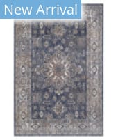 Solo Rugs Transitional S7026 Royal Area Rug