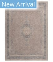 Solo Rugs Transitional S7501 Grey Area Rug