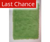 Rugstudio Sample Sale 42858R Lime Green Area Rug