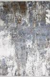 Bashian Allure A161-ALR122 Ivory Rust Area Rug