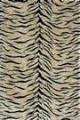 Loloi Danso DA-03 Tiger Area Rug