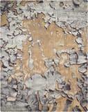 Nourison Prismatic Prs02 Beige-Silver Area Rug