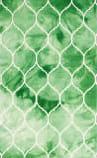 Safavieh Dip Dye Ddy685q Green - Ivory Area Rug