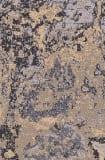 Surya Andromeda Anm-1004 Taupe Area Rug