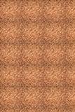 Surya Confetti CONFETT-10  Area Rug