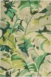 Trans-Ocean Capri Palm Leaf 1668/06 Green Area Rug