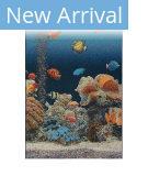 Trans-Ocean Marina Aquarium 8078/04 Blue Area Rug