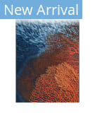 Trans-Ocean Marina Coral 8079/04 Blue Area Rug