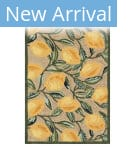 Trans-Ocean Ravella Lemon 2282/12 Natural Area Rug