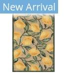 Trans-Ocean Ravella Lemon 2282/12 Natural Area Rug