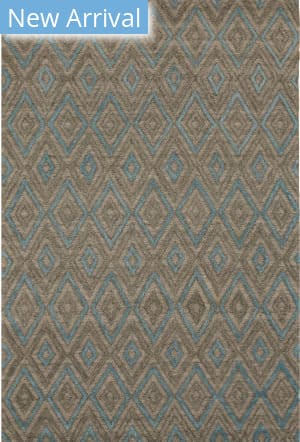 Eastern Rugs Raga Ocr4gy Gray Area Rug