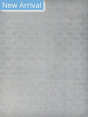 Exquisite Rugs Pavilion Flatwoven Ivory - Gray Area Rug