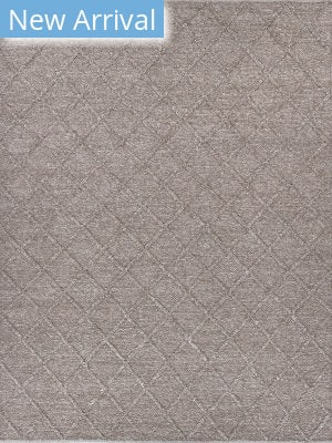 Exquisite Rugs Brentwood Hand Woven Brown Area Rug