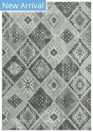 Rizzy Rothport Rtp107 Gray Area Rug