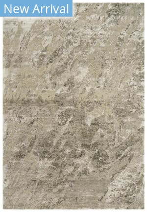Rizzy Finesse Fin102 Beige Area Rug