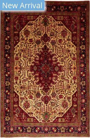 Solo Rugs Tabriz M6085-22096  Area Rug