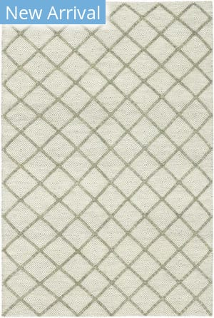 Solo Rugs Flatweave M7131-65  Area Rug