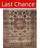 Rugstudio Sample Sale 125621R Champagne - Multi Area Rug