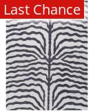 ORG Destin Zebra Purple Area Rug