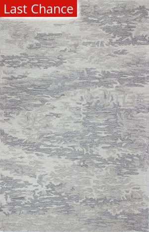Rugstudio Sample Sale 159046R Grey Area Rug