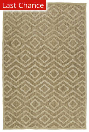 Rugstudio Sample Sale 128102R Khaki Area Rug