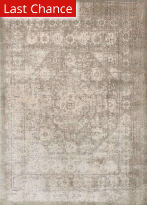 Rugstudio Sample Sale 146335R Grey - Sage Area Rug